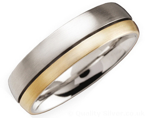 6mm Titanium and 18ct Gold Ring