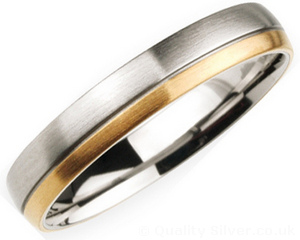 4mm Titanium and 18ct Gold Ring